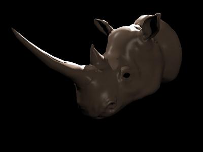 RhinoNormal_flipp