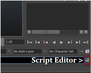 ScriptEditorLocation